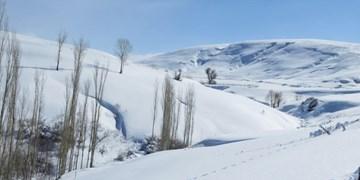 برف و باران و سرما از فردا در کشور/ دما در ۹ استان زیر صفر