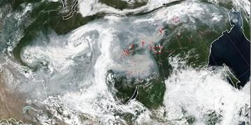 پایش محصولات کشاورزی با تصاویر ماهوارهای در ۷ استان آغاز شد