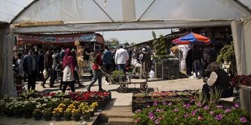 نمایشگاه گل و گیاه در بوستان گفتوگو