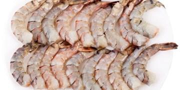قاتل میکروبهای غذاهای دریایی ساخته شد