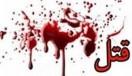 4 قتل فجیع پایتخت فقط در 30 دقیقه شوم! / گفتگو و عکس
