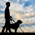 ۵ اپلیکیشن کاربردی برای نابینایان