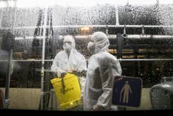 بررسی تفاوت های سه ویروس شایع/از آنفلوانزا تا کرونا
